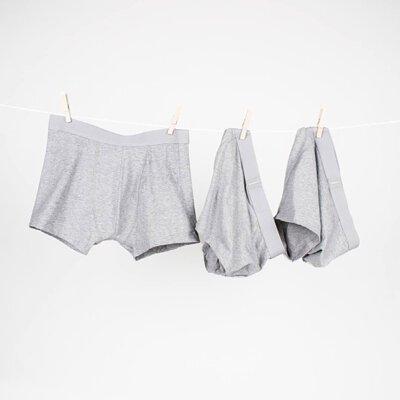 男用內褲推薦單品:Boxer Brief 舒適有機棉男用四角內褲-灰