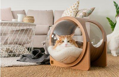 貓跳台,貓窩,貓咪太空艙,設計貓牆,貓空間,寵物居家
