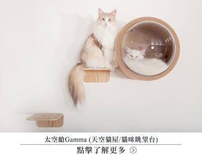 太空艙,貓屋,貓咪太空艙,膠囊貓屋,貓床