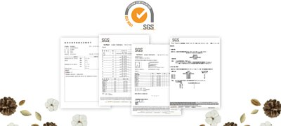 多項SGS 國際安全認證檢測