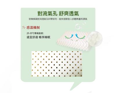 泰國菩提天然乳膠枕
