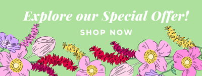 special offer, special offer, special offer, special offer, special offer, special offer,