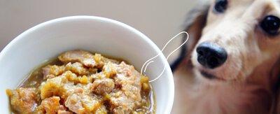 食材多樣化,營養最全面.狗狗鮮食推薦,寵物鮮食包推薦,主食罐推薦,寵物鮮食食譜推薦