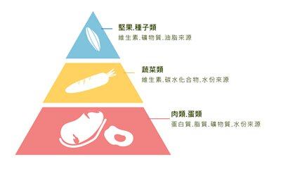 業界創新五色平衡餐