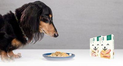 中醫五行與 五色均衡的機能鮮食.狗狗鮮食推薦,寵物鮮食包推薦,主食罐推薦,寵物鮮食食譜推薦