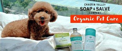 pet care, dog shampoo, certified organic, Estival Life, Chagrin Valley, Hong Kong