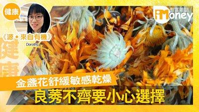 金盞花, 舒緩敏感, 濕疹