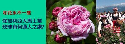 保加利亞大馬士革玫瑰, 玫瑰純露, 玫瑰花水, 盛酷生活, 有機護膚品