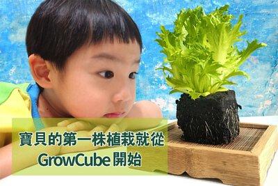 囍歡塊_寶貝的第一株植栽從GrowCube開始