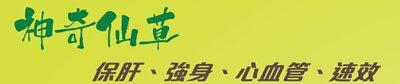靈芝孢子是「神奇仙草」,能夠速效強身、補肝和保護心血管健康。