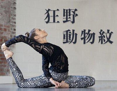 AS瑜珈褲狂野動物紋banner