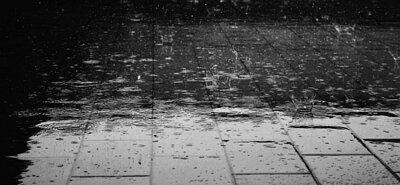 吹南風、梅雨季、颱風天,冬日陰雨連綿不斷,濕度超高怎麼辦?