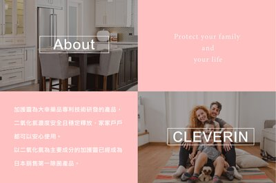 about cleverin 加護靈