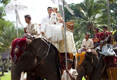 沐樂旅遊,沐樂,mullertravel,大象公園婚禮