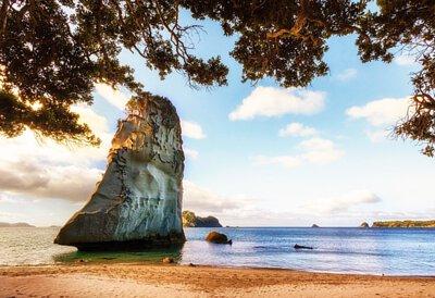 紐西蘭北島毛利文化與溫泉8日