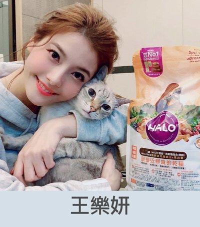 王樂妍推薦貓飼料