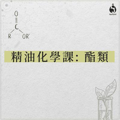 精油化學課:酯類