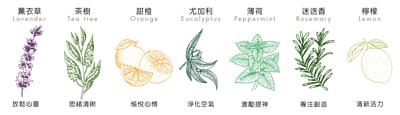 薰衣草,茶樹,甜橙,尤加利,薄荷,迷迭香,檸檬