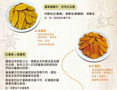 紅薑黃,黃薑黃,薑黃品種,紫薑黃