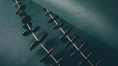 皮革質地葉片搭配黃銅枝
