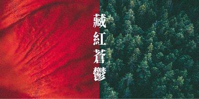 藏紅+蒼鬱香氛示意