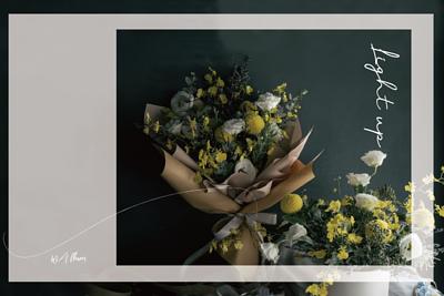文心蘭系列鮮花
