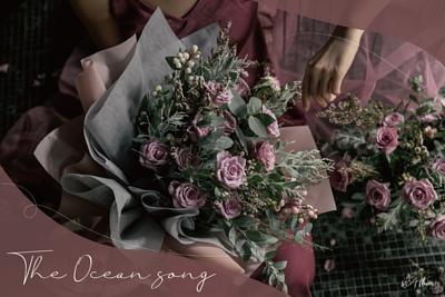 The Ocean Song 海洋之歌粉紫玫瑰