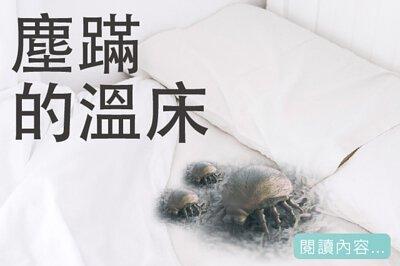 MUKAVA-聊聊睡眠-塵螨的溫床