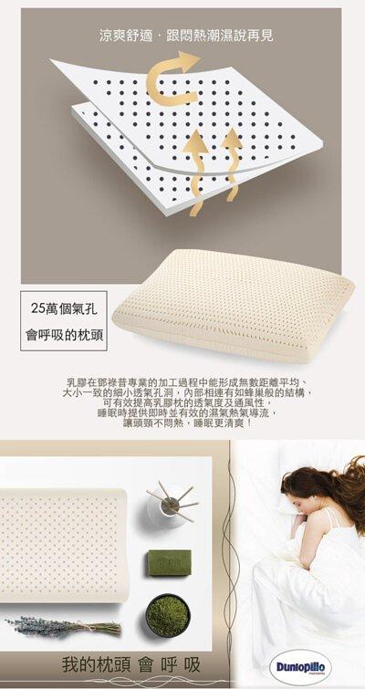 乳膠枕具有25萬個蜂巢式透氣孔-乳膠枕dunlopillo