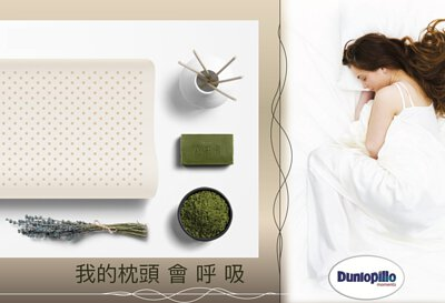 dunlopillo 枕頭 鄧祿普 乳膠枕