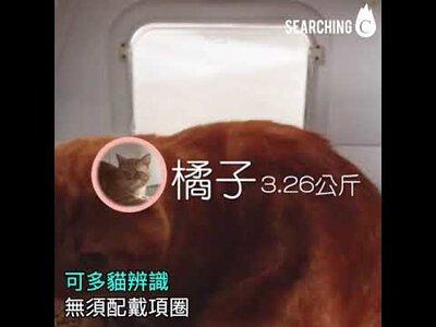 貓砂盆,LuluPet,排泄檢測,寵物,寵物健康