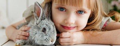 寵物寄養,寵物店,寵物用品,寵物用品店,兔仔用品,兔子,倉鼠,天竺鼠,龍貓,熊仔鼠,rabbit,chinchilla,guineapig,hamster,兔協,Iloverabbit,提摩西草,牧草,兔糧,龍貓糧,倉鼠糧,天竺鼠糧