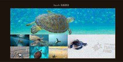 pacsafe防盜包海龜保育