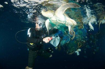 pacsafe防盜包海龜保育基金