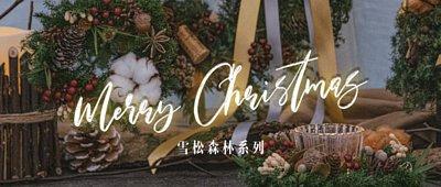 雪松,聖誕節