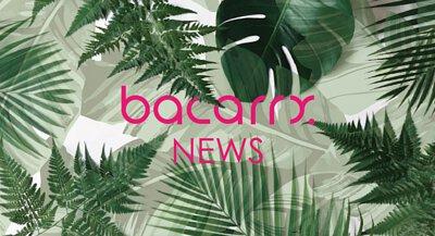 NEWS|最新消息