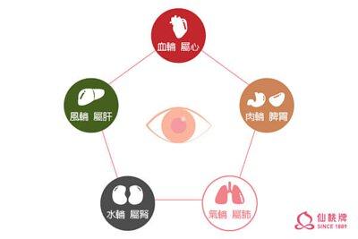 中醫也有五輪學說開奧運阿畫說眼睛大小事
