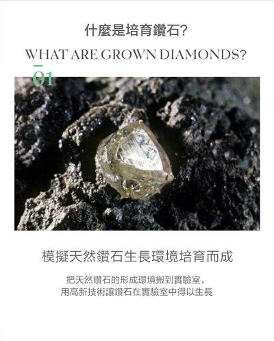 什麼是培育鑽石?