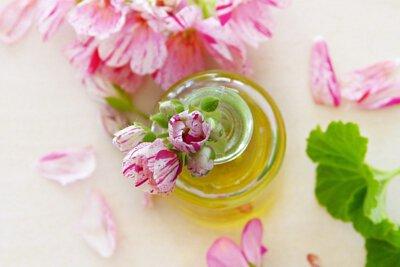 芳香精油-芳香療法-精油-plant-therapy