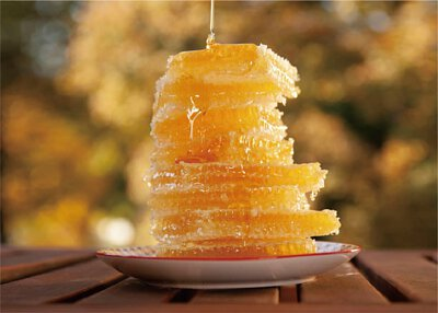 Fulmer,honey,hungary honey,cut comb,honeycomb,蜜糖,蜂蜜,蜂巢蜜,匈牙利蜂蜜,抗菌,消炎,natural ponti,ponti,ponti trading