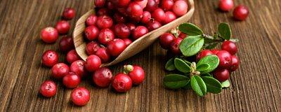 031-吃蔓越莓的好處有哪些