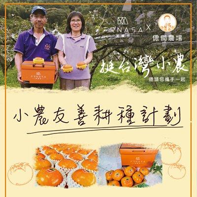 力挺小農反應熱烈,東勢時尚甜柿盡在芙娜莎,台中和平區烏石坑,甜杮之王,杮子,東勢
