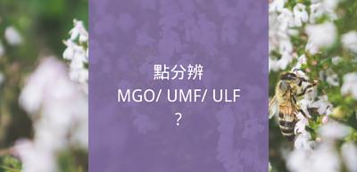 麥盧卡蜂蜜如何分等級?MGO,UMF,ULF,麥盧卡蜂蜜抗菌度數介紹