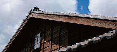ZeraCafe頭城站舍的屋頂,陽光斜射與藍天白雲