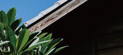 ZeraCafe頭城站舍屋簷與周遭綠植物