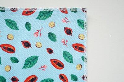 台灣蘋婆的印花設計圖案
