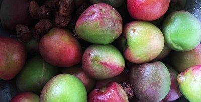 三月桃醃製的過程