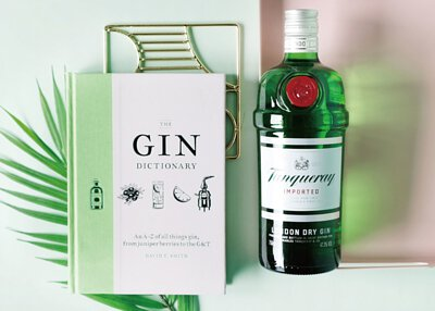 a-beginners-gin-guide