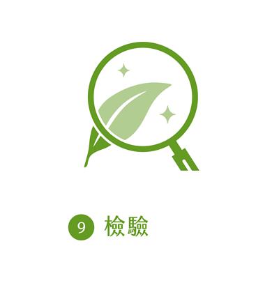晁鎮茶苑古樹茶雨林製作流程檢驗