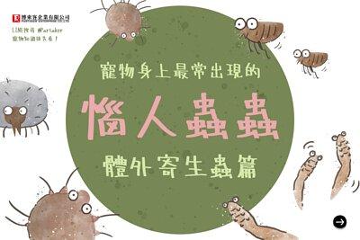 寵物身上最常出現的惱人蟲蟲-體外寄生蟲篇
